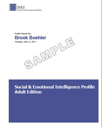 The Social Emotional Profile Self Version Institute For Social